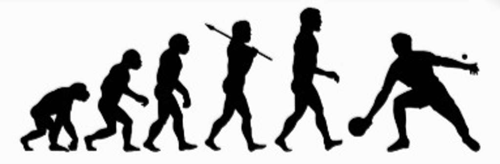 pp-evolution